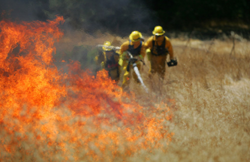 firefighters putting out brush fire